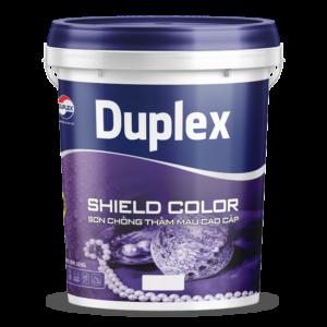 Sơn chống thấm màu cao cấp sơn Duplex