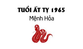 ất tỵ 1965