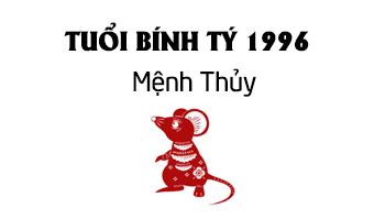 bính tý 1996