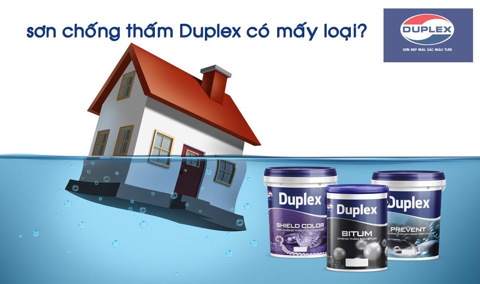 sơn chống thấm Duplex có mấy loại